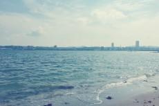 scenery379