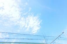 sky261