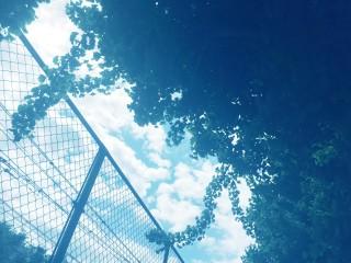 【高解像度】フェンス越しに覗く夏空