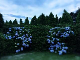 【高解像度】青い景色