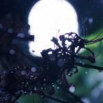 【高解像度】灯りと雨と彼岸花(3パターン)