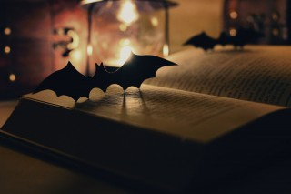 【高解像度】古書とコウモリのシルエット(3パターン)