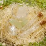 【高解像度】巣の中の鉱物(3パターン)