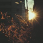 【高解像度】街角の日差し(3パターン)