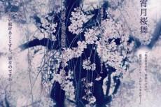 flower392-yukisong_kano