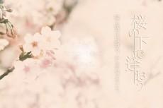 flower418-masumi_morikawa