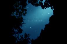 cosmo_memory
