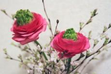 flower738