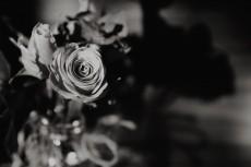 flower744-3