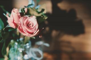 【高解像度】花瓶の薔薇と影(3パターン)