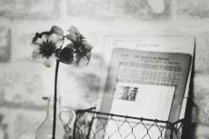 flower748-3