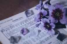 flower752-2