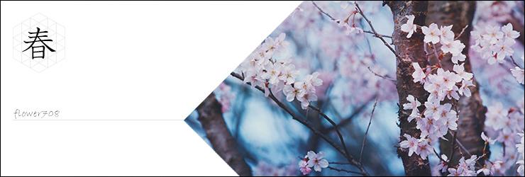 春に咲く花、春らしい雰囲気の素材