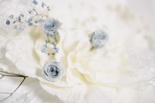 【高解像度】アンティークな雰囲気の青い薔薇(バラ)(3パターン)