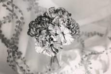 flower887-2