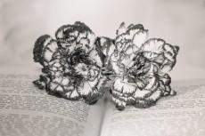 flower889-2