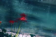 flower896