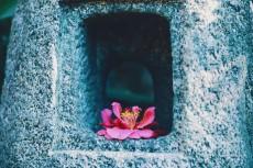 flower961
