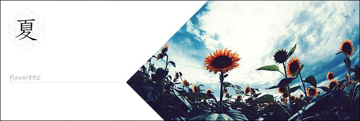 夏に咲く花、夏らしい雰囲気の素材