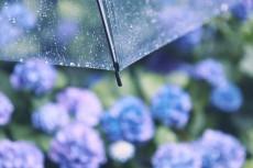 flower1044