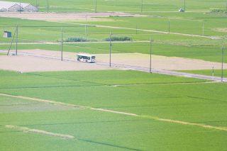 【高解像度】田園地帯を悠々と走るバス(3パターン)