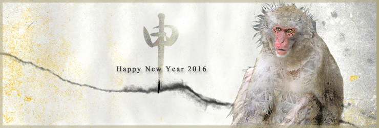 slider-2016-newyear