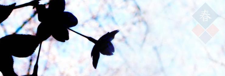 桜、薔薇、草木の素材